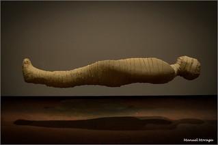 La Momia  /  The Mummy