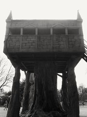 Treetop (revalec) Tags: black blackandwhite outdoors outside tree house treehouse play playing playground childhood cameraphone