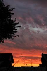 Temblor Abril (ryalexs) Tags: modelo sky heaven photography photo cream sunset chile terremoto temblor catolic temblo maipu santiago icono