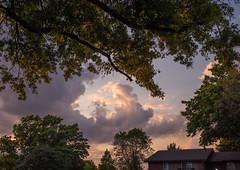 apartment view sunset (129/365) (severalsnakes) Tags: 365 kansascity m3528 pentax saraspaedy shawnee k1 manual manualfocus