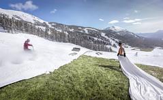 Artificial Beauty II (Modifeye) Tags: surre surrealism photomanipulation photoshop adobe canon 5dsr ski sheet snow seasons creative awesome impossiblephotography realistic