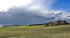 Zickersche Berge (Wunderlich, Olga) Tags: rügen insel mönchgut groszicker berge hügel grün landschaft wald wasser himmel wolken frühling natur naturaufnahme weg mecklenburgvorpommern deu