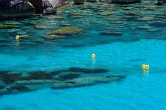 blue (retniwave) Tags: seascape mallorca españa spain nature naturaleza sea mar verano summer water cristalclear bay blue azul flickr nikon d500 70200mm sunshine natur