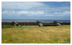 cannons carr's bay monsterrat west indies (heatherkorn) Tags: cannon montserrat carrs bay caribbean island volcano pirate west indies ocean water