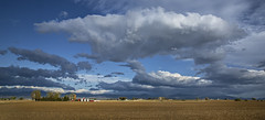 down on the farm (eDDie_TK) Tags: colorado co weldcountyco weldcounty berthoudco johnstownco frontrange frontrangeco coloradoseasternplains farms farming rural ruralliving rurallife barns redbarns clouds sky