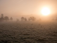 River Lea, Hertfordshire-1020863 (chrisyatesuk) Tags: hertford kingsmead autumn earlymorningsun hertfordshire landscape