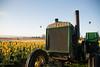 John Deere (Dimitri_Stucolov) Tags: johndeere tractor woodenshoetulipfarm woodenshoetulipfestival hotairballoon tulips tulipfestival spring oregon pacificnorthwest