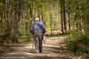 Old Man & Dog (PRPhoto dot Wales) Tags: woods woodland forest minwear pembrokeshire wales trees sunlight may 2017 photograph canaston travel nature prphotowales canon nofilters nothdr dog walking