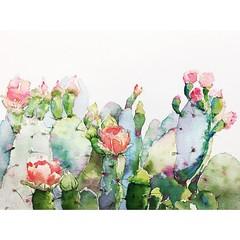 🌵 (丸子·汤) Tags: illustrator drawing art flower color sketch watercolour summer painting flowers draw watercolor interesting