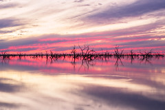 Sunsets Reflection (mezuni) Tags: menindee newsouthwales australia au