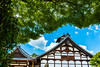 Kyoto, Japan (David Ducoin) Tags: asia boudhism japan religion shinto shrine temple kyoto kyotoprefecture jp