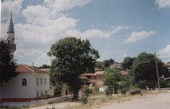 TARAMA348