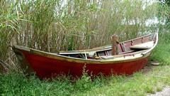 La barque rouge (brigeham34) Tags: marchedujeudi rsv printemps mai agdegraudagdeetretourlelongdelhérault lesrivesdelhérault fleuvecôtierhérault berges pointu roseaux latamarissière agde hérault occitanie france eu fz45