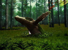 Wooden Whale In The Woods (pasteurizacion) Tags: whale wood forest sureal surrealism ivy poison butterfly moss wooden design graphic photoshop photomanipulation