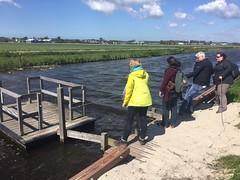 Leiden - The Netherlands - Walk the World 2017