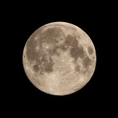 20170511_IMG_8562_trm (NAMARA EXPRESS) Tags: astronomy moon luna age142 fullmoon satellite universe space star night spring fine outdoor color toyonaka osaka japan canon eos 7d tamron sp 70300mm f456 namaraexp
