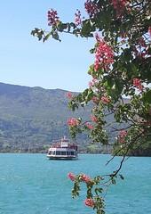 Le Libellule en baie de Talloires (MPRPJB) Tags: lacdannecy lacbleu lake bateau baie talloires bay chênerose printemps spring savoiemontblanc eaupure eauxturquoises