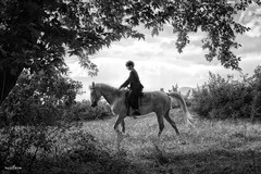 the boy & the horse (dim.pagiantzas | photography) Tags: boy man people male horses animals mammals nature landscape plants trees sky clouds cloudy field leaves movies historical history cinema cine entertainment adventure actors grayscale monochrome outdoor scene ears