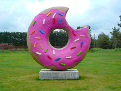 The Springfield Donut (Steve Taylor (Photography)) Tags: donut springfield simpsons sprinkles glazed