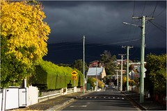 Back Streets of Montrose (Trains In Tasmania) Tags: australia tasmania montrose hobart riverviewroad suburb street lane autumn hedge scene sky telegraphpole wires fence trainsintasmania ef35350mm13556lusm glenorchy tree stevebromley canoneos550d