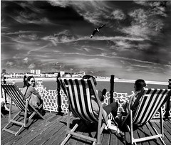 Seagulls! (The Real Silver Surfer) Tags: brighton blackandwhite monochrome palacepier