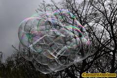BURBUJA DE COLORES. BUBBLE OF COLORS. NEW YORK CITY. (ALBERTO CERVANTES PHOTOGRAPHY) Tags: bubble burbuja