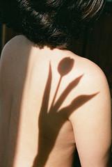(EYLUL ASLAN) Tags: girl tulip flower shadow light nikon berlin 2017 hair brunette beautiful skin naked nude spring