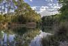 Reflejos sobre el Río / Reflections on the River