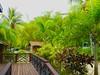 Version 2 Honduras Anthony's Key Resort
