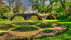 #Bridge - #FlickrFriday (YᗩSᗰIᘉᗴ HᗴᘉS +6 500 000 thx❀) Tags: flickrfriday bridge hdr parc hensyasmine tulips flowers nature old saariysqualitypictures
