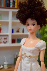 Everyday B Girl (Girl Least Likely To) Tags: sekiguchi momoko everydaybgirl riku curlyhair curls brunette asianfashiondolls japanesetoys dolls dress dollhouse dollscene dollroom diorama miniatures toys