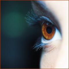 The eye of my daughter. Macro Mondays. (Gudzwi) Tags: macromondayseyes macromondays mm hmm browneyes brown eye eyes auge braun sehen tosee macro blick view