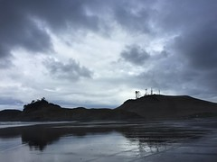 Waking up. (H Krom) Tags: moody clouds morning oregon sand treeappreciation trees silhouette landscape coast pacificcoast pacificnw nature naturephotography