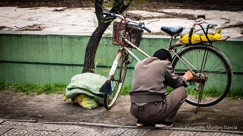 Life in Pyongyang