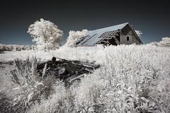 Carroll County Infrared (Notley) Tags: httpwwwnotleyhawkinscom notleyhawkinsphotography notley notleyhawkins 10thavenue barn farm ir infrared rural carrolltonmissouri carrollcountymissouri 2017 may spring