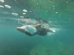 G0118062 (Visit Pilar de la Horadada) Tags: swimmers meeting point hibernismare swim natación nadar milpalmeras pilardelahoradada alicante costablanca vegabaja comunidadvalenciana quedada beach strand swimm