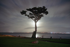 (patrickjoust) Tags: pacificgrove montereycounty california supermoon tree pacificocean longexposurenight park fujicagw690 kodakportra400 6x9 medium format 120 rangefinder 90mm f35 fujinon lens c41 color negative film manual focus analog mechanical patrick joust patrickjoust northern ca usa us united states north america estados unidos pacific ocean sea water clouds picnic bench night after dark cable release tripod long exposure