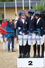 IMG_3193 - Version 2 (RPG PHOTOGRAPHY) Tags: gb team awards all copyrights protected forbidden use without permission saumur cdi 3 cdio 2017