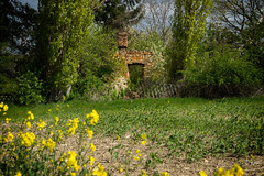 2017 Old plantation (jeho75) Tags: sony ilce 7m2 zeiss harzvorland harz germany deutschland kroppenstedt raps april ruine ruins lost place