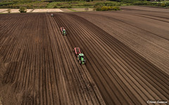 Down on the farm (Steve Samosa Photography) Tags: rainhill england unitedkingdom gb farm farming tractor potato aerial dronecamera