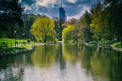 Reflection (Maria Eklind) Tags: relfection outdor malmö park nature citynature speglig sweden slottsparken blommor flowers kronprinsen tree skånelän sverige se