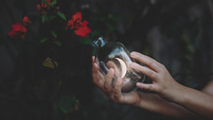 289/365 An Endless Romance with the Unknown (Katrina Y) Tags: surreal surrealphotography selfportrait hands handsinframe flowers moon mood romance artsy art artistic conceptual concept cinematic dark 2017 365project
