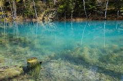 (# 182) (metriggg) Tags: poland travel lake blue water kolorowe jeziorka mountain tree