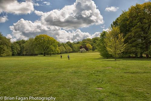 Bramcote Hills Park