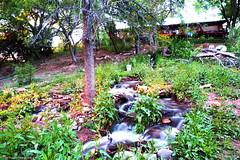 DSC01213(1) (o10daw) Tags: waterall backyard longexposure arizona usa water river photography