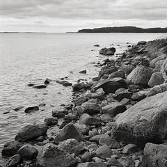 (tmkbnn) Tags: yashicamat124g tlr twinlensreflex mf mediumformat 6x6 120 film filmphotography ilfordhp5plus bw blackandwhite sweden coast rocks sea tomek bwfp