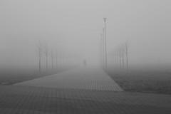 morning stranger (Mindaugas Buivydas) Tags: lietuva lithuania bw spring march klaipėda klaipeda memel fog mist morning timeout humantouch mood moody dark darkness minimal minimalism mindaugasbuivydas