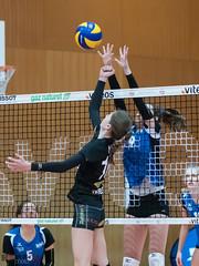 170429_VFF_MU17_NUC-SMAP_071.jpg (HESCphoto) Tags: volleyball volleyfinalfour neuchâtel riveraine vbcsmaeschpfeffingen nuc jugend damen mu17 schweizermeisterschaft saison1617