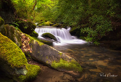 Eastatoe Falls Downstream Cascade - Main Falls access closed. (Reid Northrup) Tags: water stream waterfall eastatoefalls rocks rhododendrons northcarolina cascade landscape trees nature longexposure forest
