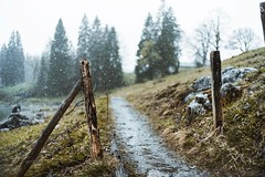 W A N D E R. #wander #wanderlust #wanderfolk #road #way #walk #trip #nature #obersee #mountain #alps #swissalps #adventure #rainy #snowy #snowing #sonya7ii #a7ii #summilux35 #summilux #asph #fle #leica #techartpro #moodygrams #moody #travel #explore #swit (Cem Bayir) Tags: instagramapp square squareformat iphoneography uploaded:by=instagram lofi